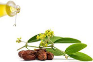 olio di argan biologico erboristeria ischia