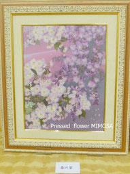 春色の押し花アート(桜)