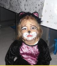 2-beiniger Katzenwelpe