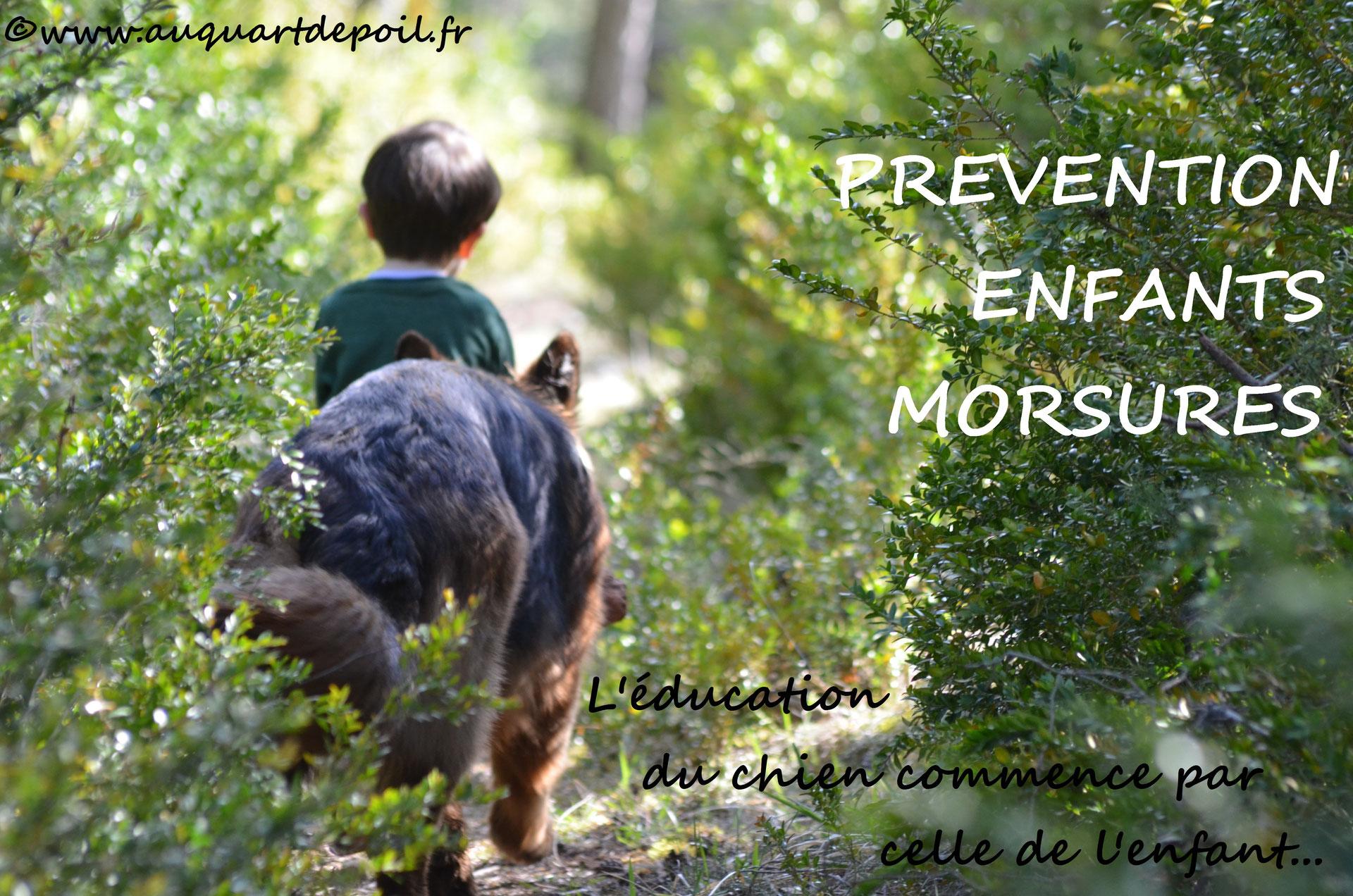 (c) Auquartdepoileducateurcaninrennes.fr