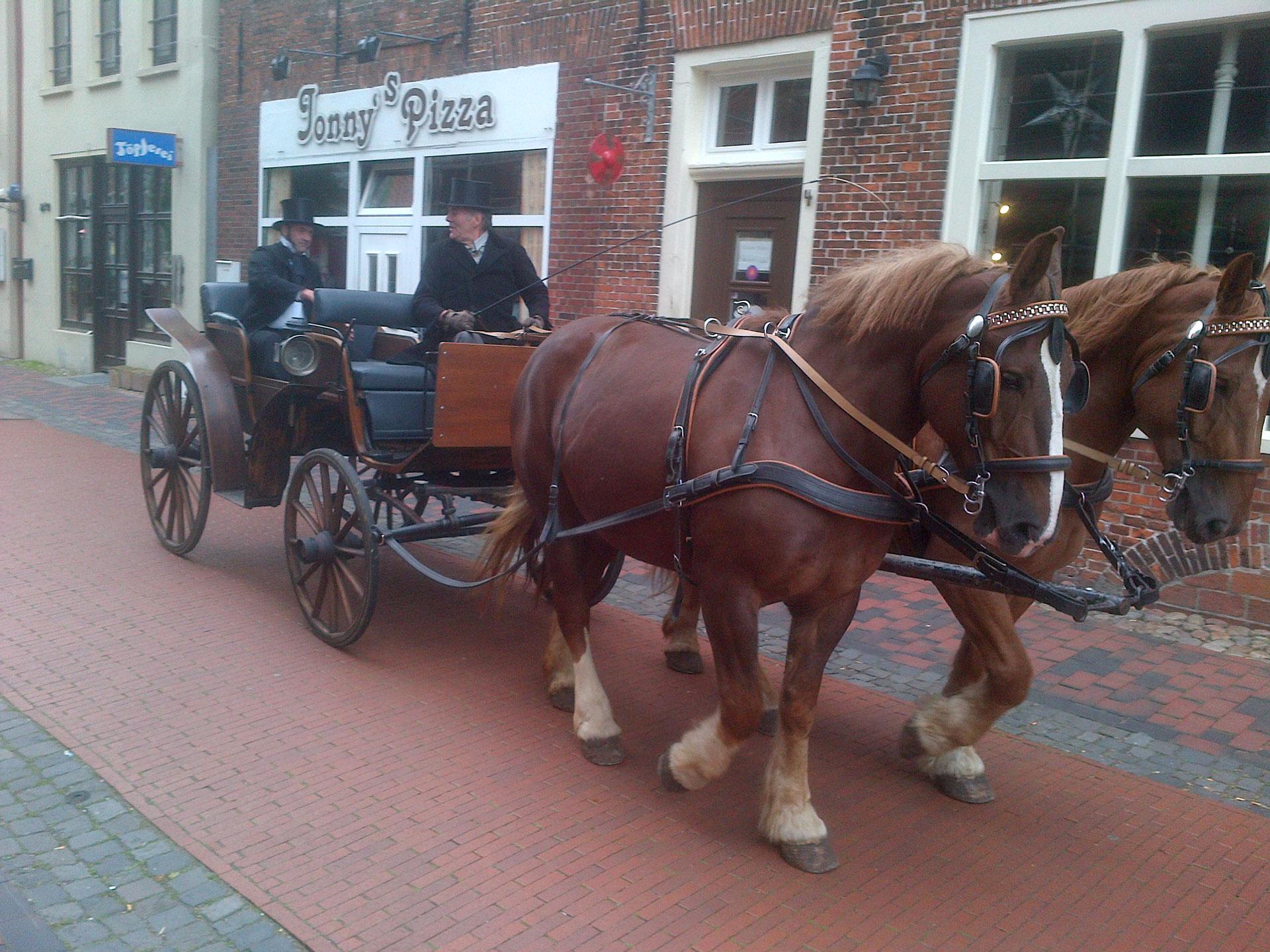 (c) Buurenpeerd-arbeit-mit-pferden.de