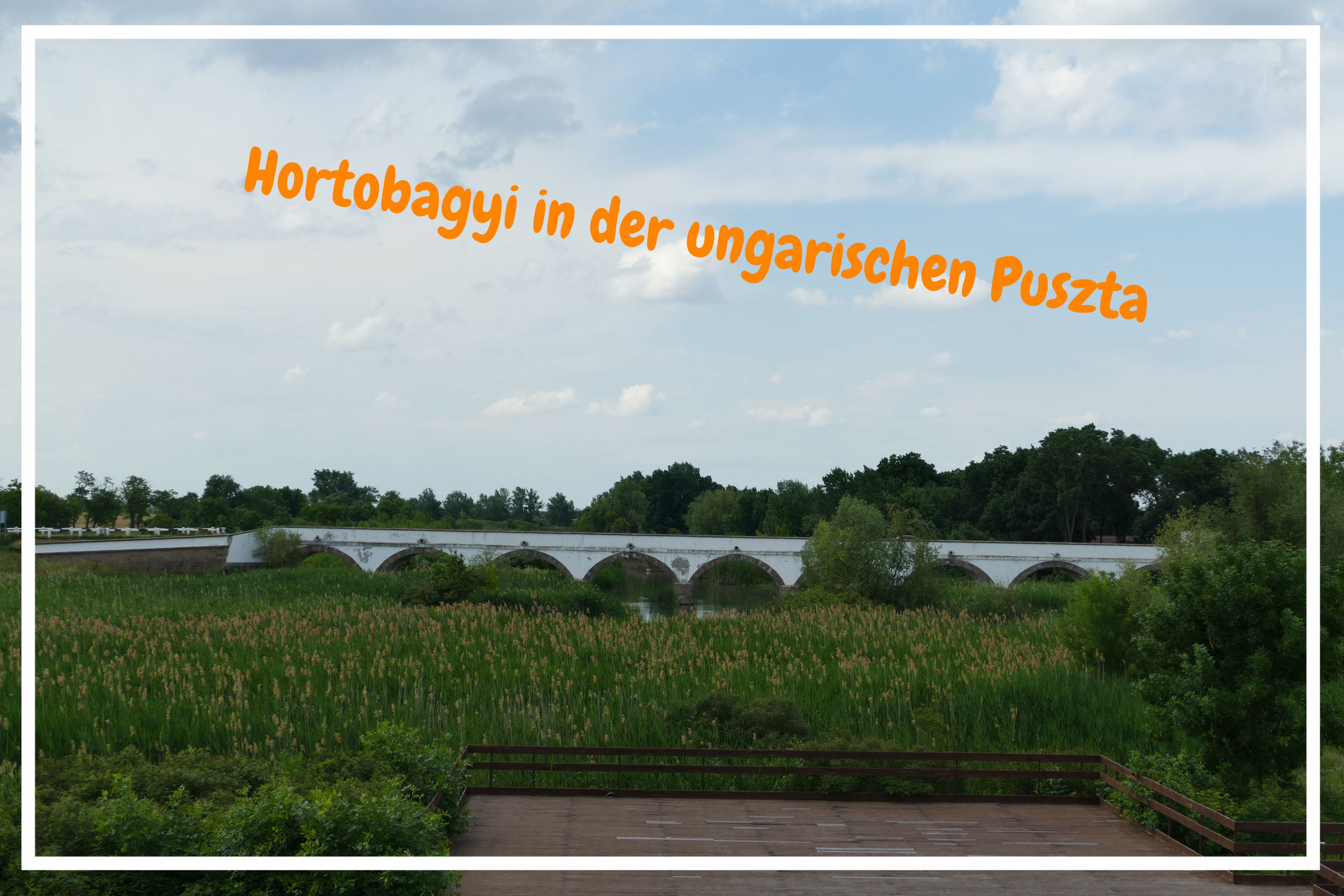 Ungarn Die Puszta Ruft Fu On Tours Webseite