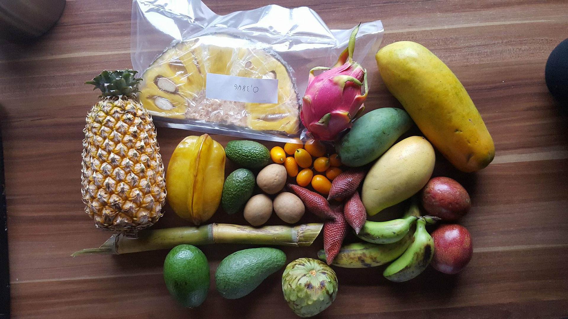 jurassic fruit