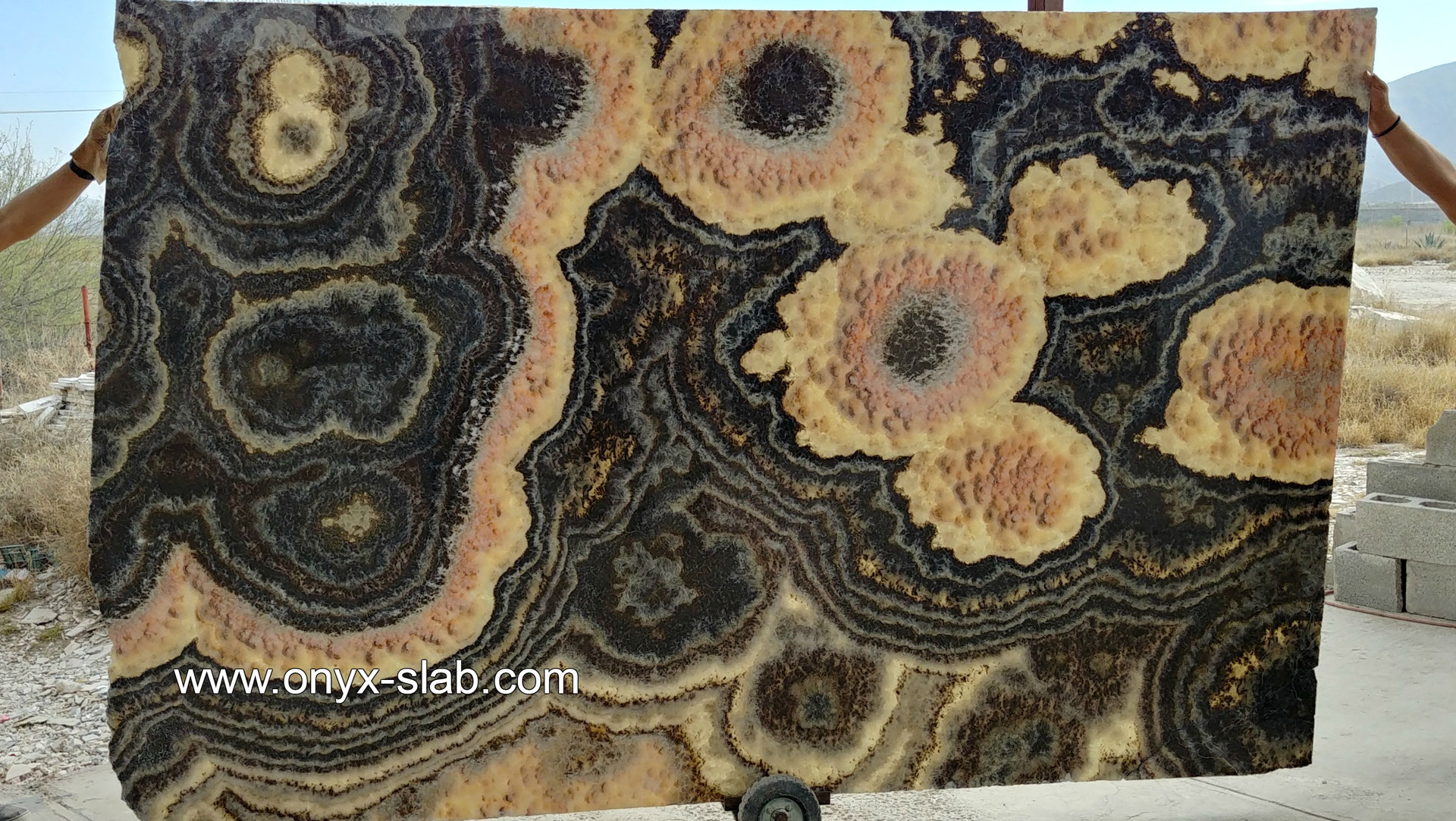 Onyx Stone Slabs : Luxury onyx slabs