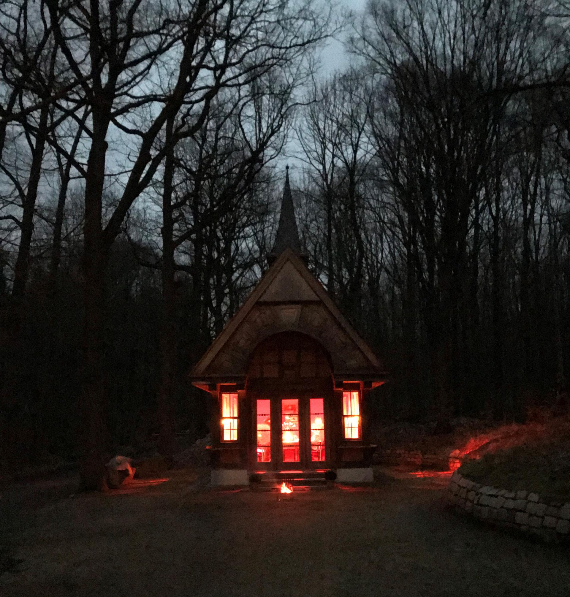 Candlelight Dinner Husky Tour \