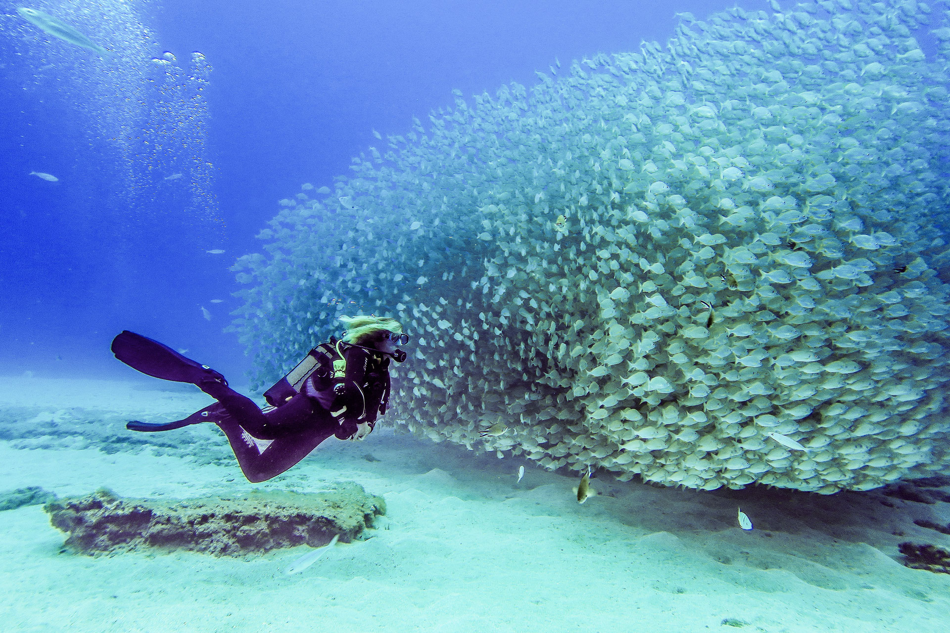 Scuba Diving in Gran Canaria - The Venice of the Canaries - Scuba Diving Website for Women
