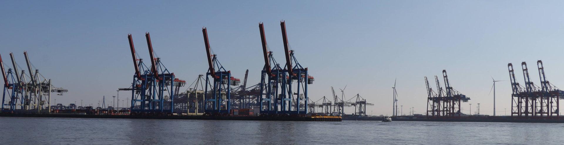 Ihr Firmensitz In Hamburg Der Buchhalter Ev
