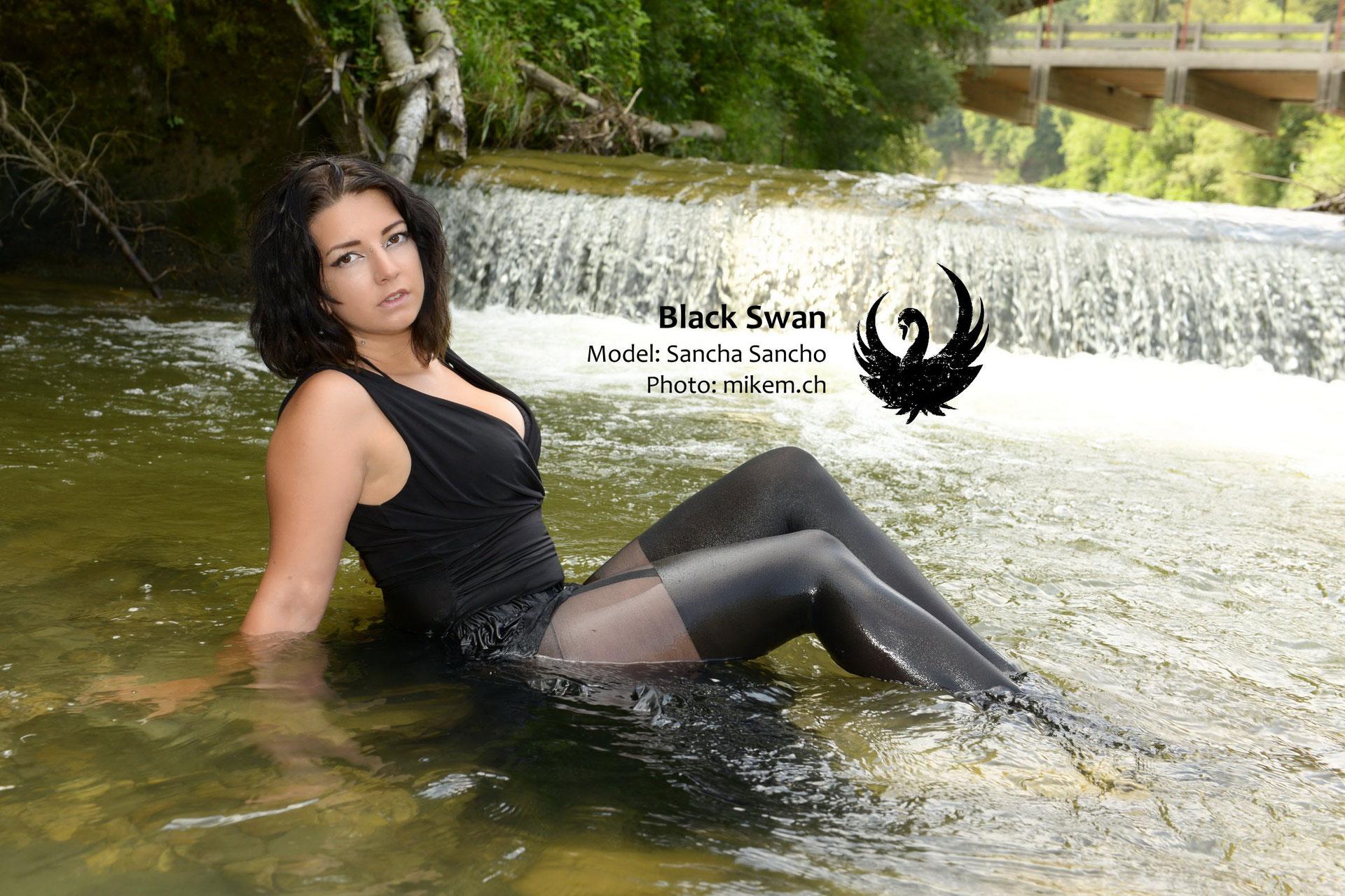 Black Swan Wetlook - Fotograf Mikem Bern - Fotoshooting