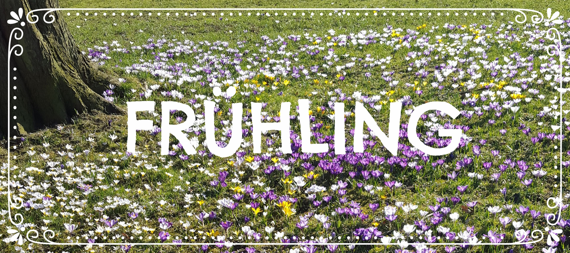 Ziemlich Frühling Färbung Aktivitäten Zeitgenössisch - Malvorlagen ...