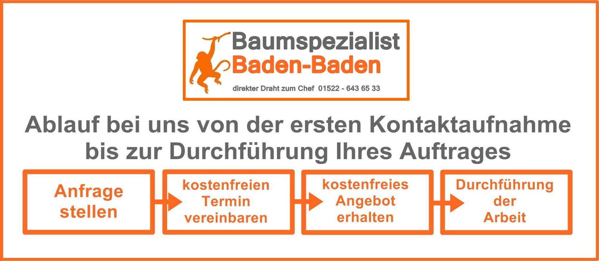 Die Besten Baumpflege Baumspezialist Baden Baden