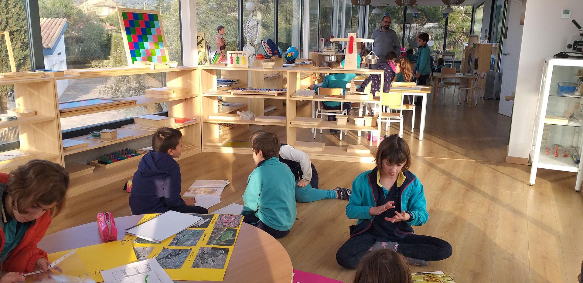 Calendario Montessori.Elementary 6 12 Years International Montessori School Of Cordoba