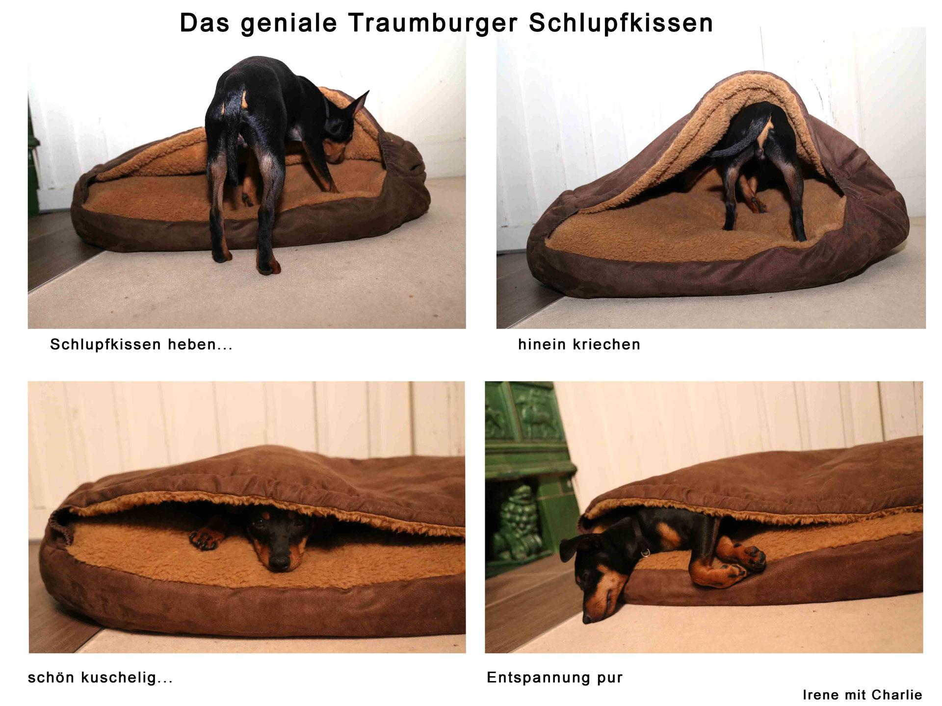 Prächtig Traumburger-Hundebett - Der einziartige und optimale Schlafplatz #PP_51