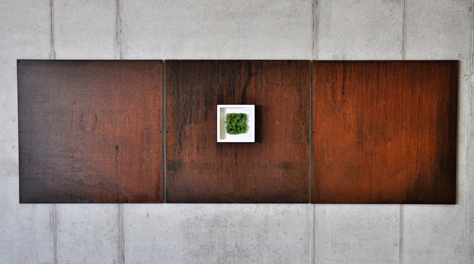 moosbild moosbild islandmoos nature art i famoos. Black Bedroom Furniture Sets. Home Design Ideas