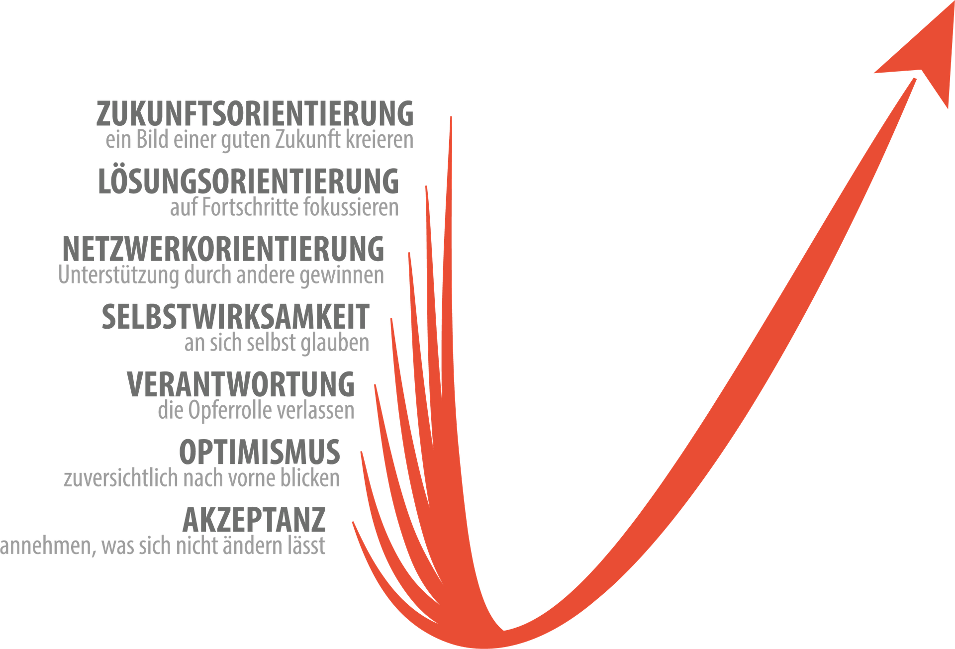 Was ist Resilienz? - Coachingzentrum Heidelberg - Seminare