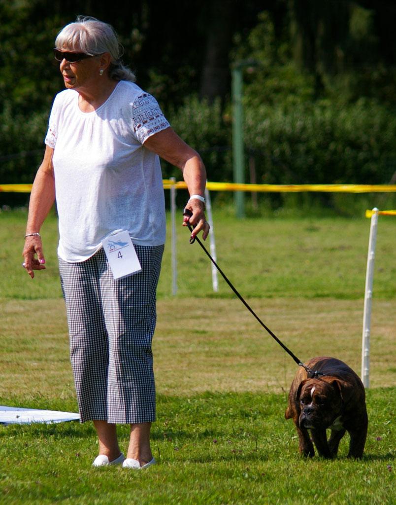 Die Geschichte Des Continental Bulldog 2dogs Continental Bulldog Kennel Aus Dem Spreewald