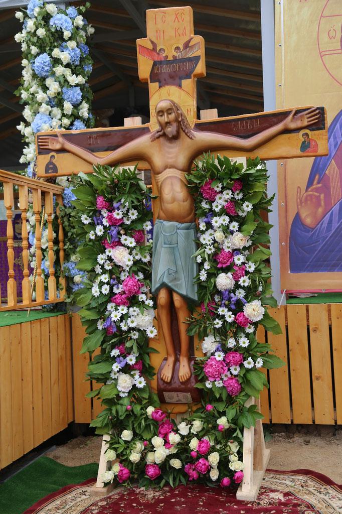 дикорастущее годеновский животворящий крест фото разъема