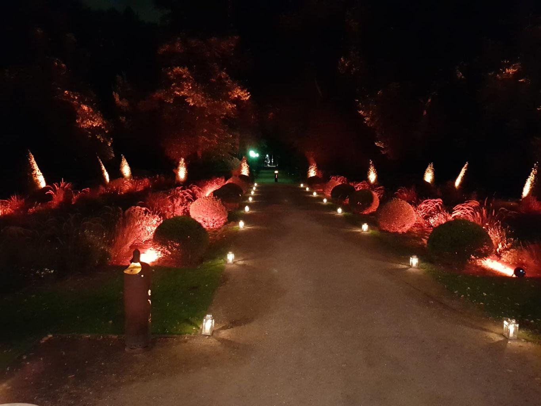 Restaurant Biergarten Teehaus Berlin Biergarten Restaurant Event