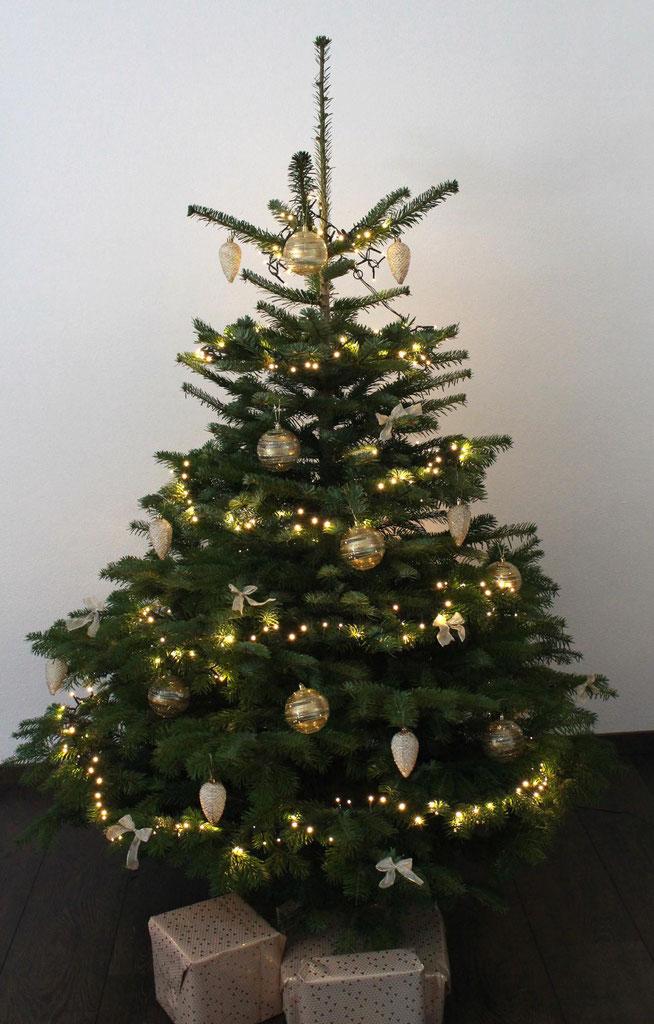 home echte fertig geschm ckte weihnachtsb ume christb ume online kaufen. Black Bedroom Furniture Sets. Home Design Ideas