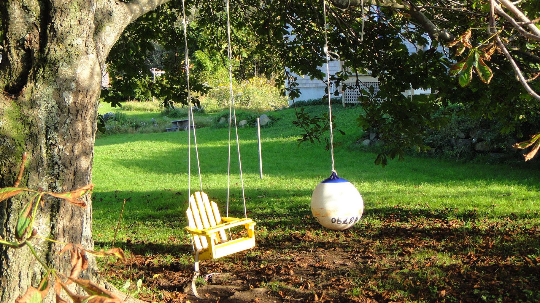 Quoi Mettre Au Potager En Septembre avril 2020, toujours confinés, on s'active au jardin - site