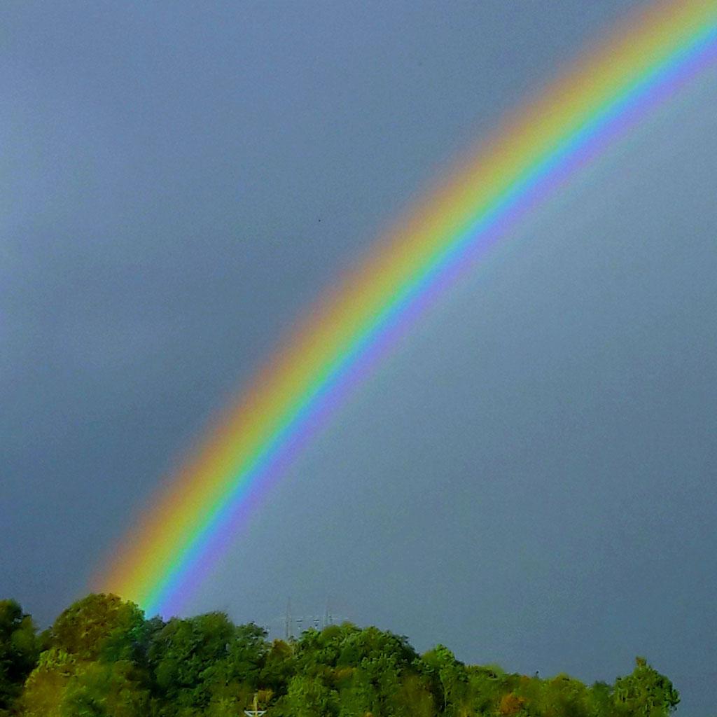 wieviel farben hat der regenbogen