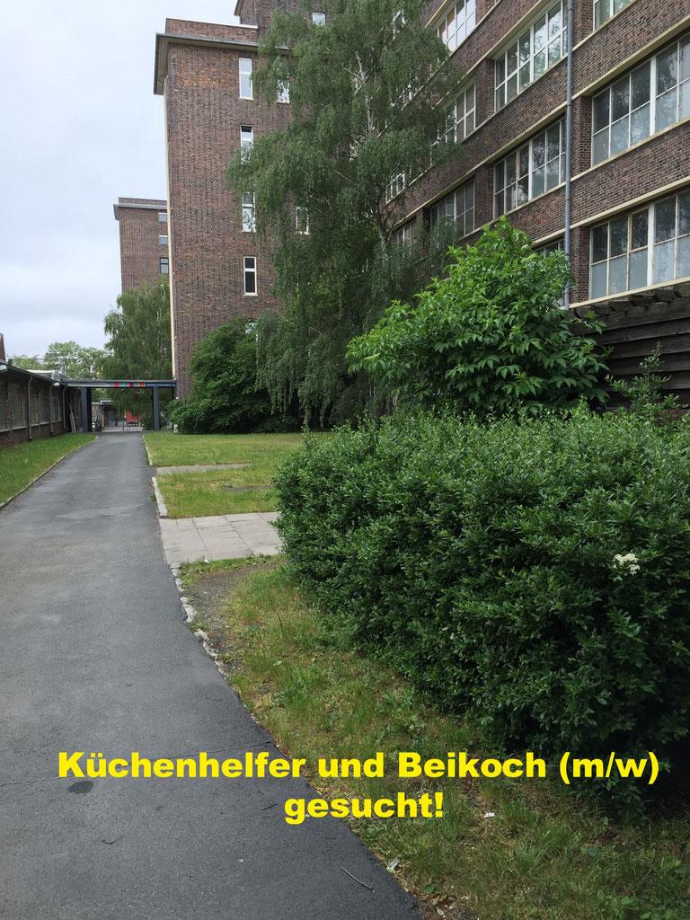 Rote Karte Gesundheitsamt Berlin.Kuchenkrafte M W Div Elmlinger Personalservice