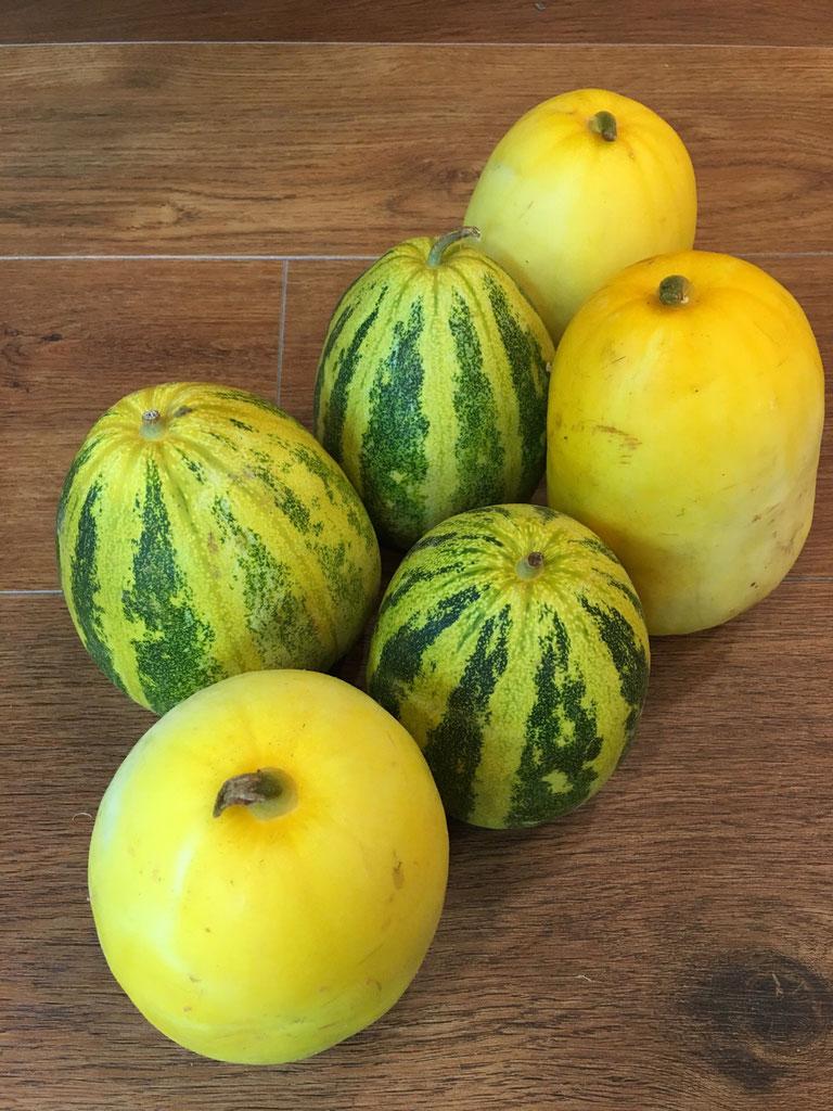 裂果したトマトの食べ方   トマトの育て方.com