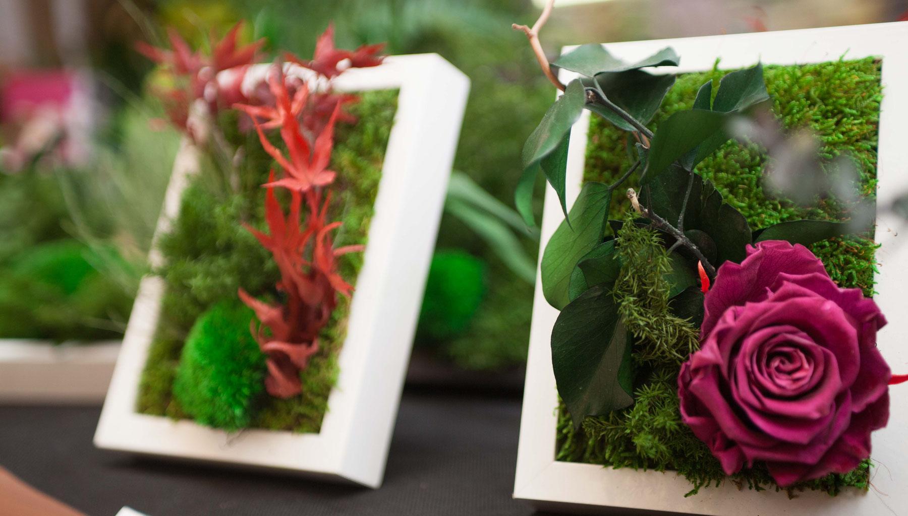 tableau vegetal stabilise vegetal indoor mur v g tal stabilis. Black Bedroom Furniture Sets. Home Design Ideas