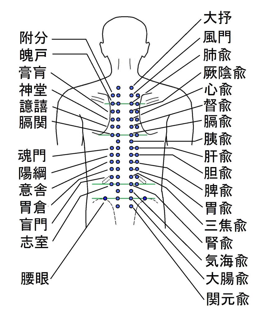 首~背中の痛み - ツボ健康療法講座!