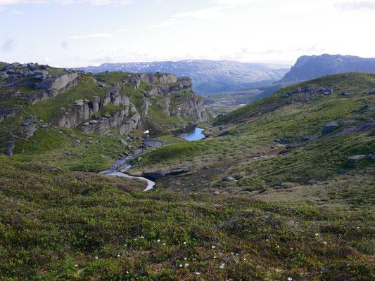 Rückweg direkt durch ein sumpfiges Tal
