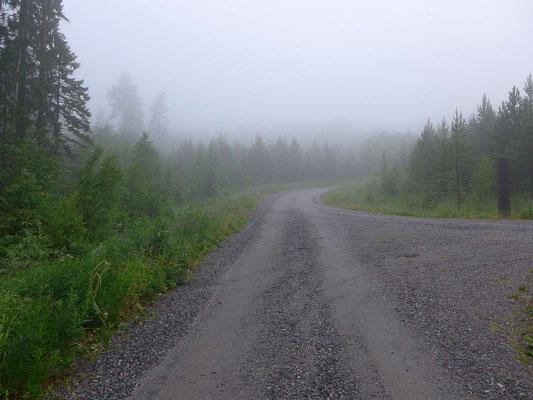 Zufahrt bei Nebel