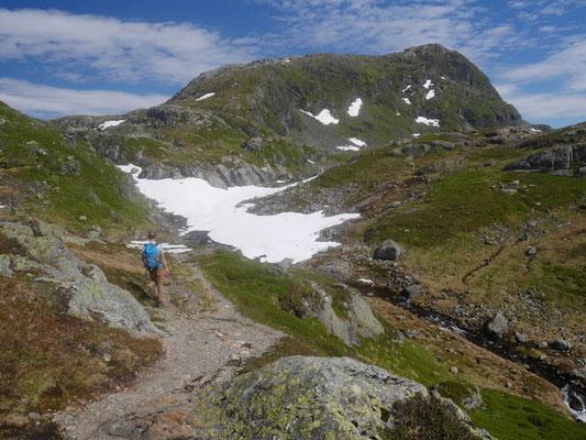 Der Gipfel kommt in Sicht, davor das Schneefeld