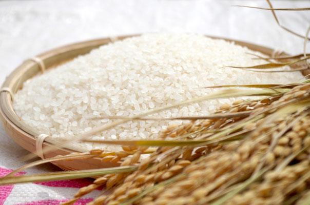 農薬、肥料、除草剤不使用 自然栽培米をお取り寄せいたします。
