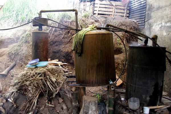 Zuckerrohrschnaps direkt aus der Destille eines AACRI-Farmers