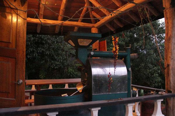 Röster auf einer Terasse in Mindo
