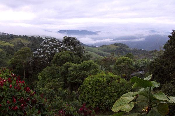 Blick über die Gegend um La Perla