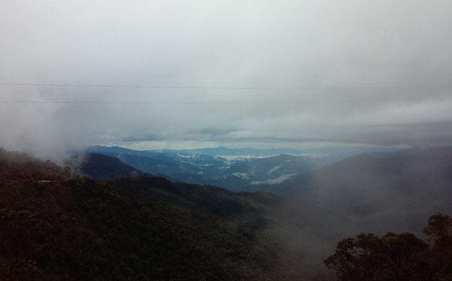 Nebelwald - Fahrt nach Zumba