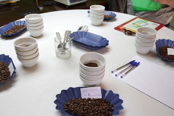 Cuppingtisch der ACRIM