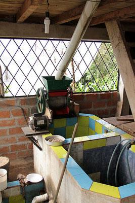 sehr gut installierter Despulpadore und Waschbecken für Kaffee bei einem Mitglied der ACRIM