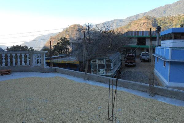Genaros Patio beim Nachbarn auf dem Dach / Miete pro Jahr 200 Quetzales