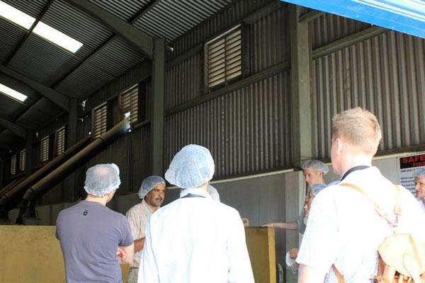 Eingang der Trockenverarbeitungshallen