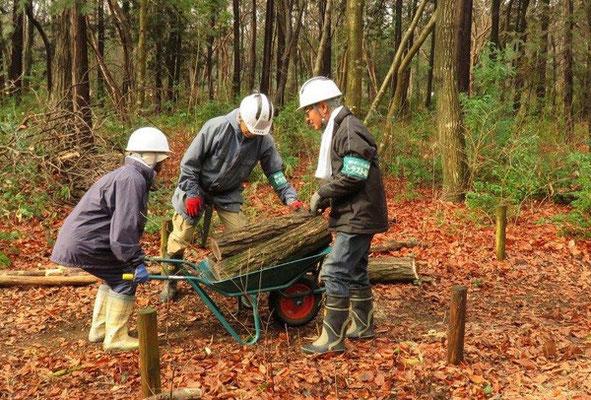 駒切りにした木を運ぶ