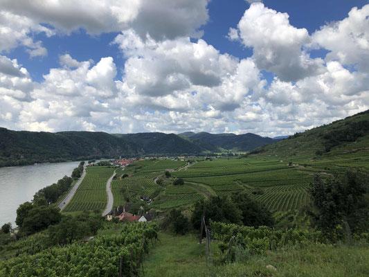 Wandern in der Wachau