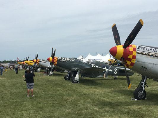 Mustangs P-51