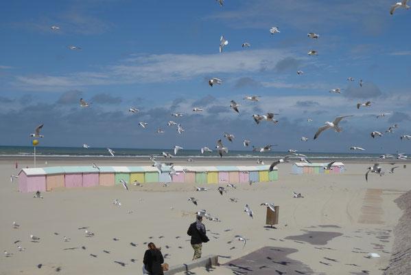 Strandimpressionen Berck