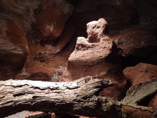Termitenhügel im Terrarium