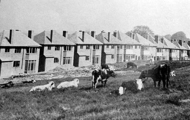 Weoley Castle estate under construction c1930 - image from John Boughton's Municipal Dreams website