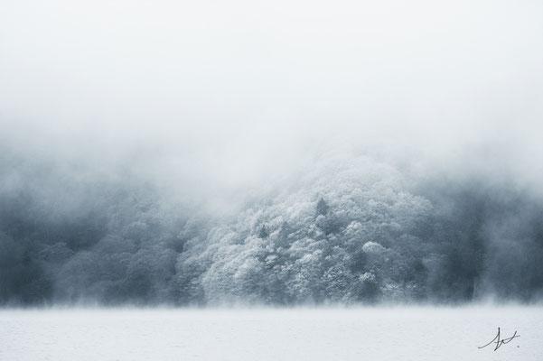 「霧心(むしん)」