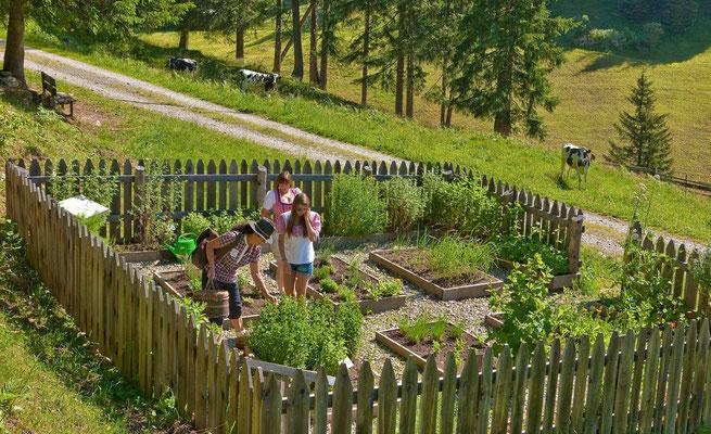 Der Kräutergarten auf den Gesundheitswegen Weißenbach im Tauferer Ahrntal in Südtirol