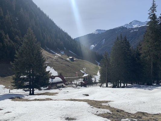 Blick auf die Riesaalm auf dem Bewegungsweg Weißenbach