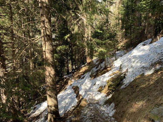 Auf dem Bewegungsweg in Weißenbach